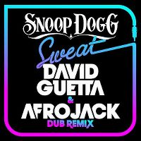 Cover Snoop Dogg vs. David Guetta & Afrojack - Sweat [Dub Remix]